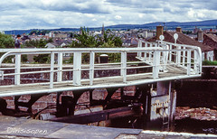 Angler # Caledonian Canal # 365 # Nikon F501 Dia -_ (íṛíṡíṡôṗĕñ ◎◉◎) Tags: nikon f f501 af film analog diafilm colorslide umkehrfilm farbe irisisopen