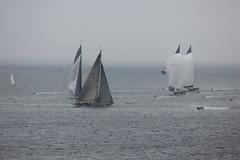 IMG_1551 (Skytint) Tags: jclass yachts falmouth cornwall england 2012