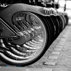 IL SENSO DELLA CONTINUITA'... (Sebastiano Milardo Italy www.sebastianomilardo.it) Tags: bicycle cycle bici paris parigi street cycles 2010 sebastianomilardo