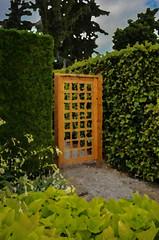 Garden Gate (Thomas Dwyer) Tags: canada art photoshop garden nikon gate outdoor arboretum botanicalgardens niagaraonthelake lightroom palletknife thomasdwyer coolpixa