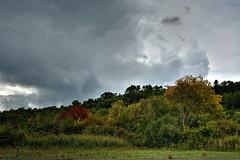 Automne (lizard.land) Tags: autumn sky cloud nature automne nikon ciel polarizer nuage var hdr polarisant d7100 hdrenfrancais