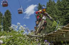 41 steve smith (phunkt.com™) Tags: world mountain cup bike race hill keith down valentine downhill dh mtb uci lenzerheide 2015 phunkt phunktcom