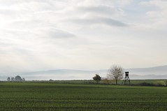 Morgennebel (Uli He - Fotofee) Tags: oktober nebel herbst uli ulrike freitag morgennebel morgenspaziergang hergert nebelschwaden nebelstimmung ulrikehe ulrikehergert ulihe