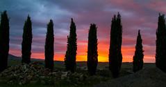 Tuscany, Italy (Mawele Digital Photography) Tags: sunset italy landscape tuscany pienza europ montichiello