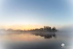 Lle mystrieuse (photosenvrac) Tags: ile ciel paysage loire brume leverdesoleil fleuve sigma150 thierryduchamp