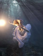 Desirae - Submersion Series (wesome) Tags: redding ikelite underwaterportrait adamattoun