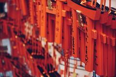 2015-11-09 11.34.01 1 (giu_vsc) Tags: trip travel japan kyoto sony solo osaka rx100 rx100m3