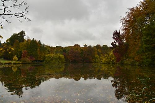 Forêt entourant l'étang de la Longue Queue sous un ciel gris