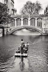 Face-to-face (Sylviane Moss) Tags: cambridge england cam mallard stjohnscollege punt rivercam bridgeofsights