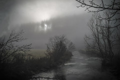 early morning sunbeams (freiraum7) Tags: 35mm sony voigtlander ii nokton voigtländer f12 a7ii i