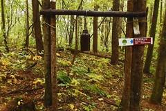 #Japan #Gunma suene la campana para entrar... (soros004) Tags: trees naturaleza verde green nature japan forest rboles rainyday bell calm campana trail bosque sendero gunma japn serenidad dalluvioso