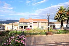"""Flores en el parque de Tibasosa • <a style=""""font-size:0.8em;"""" href=""""http://www.flickr.com/photos/78328875@N05/23166888333/"""" target=""""_blank"""">View on Flickr</a>"""
