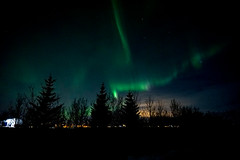 Iceland_2015-277 (agoldmutt) Tags: iceland reykjavik geyser ingvellir northernlights goldencircle gullfosswaterfall