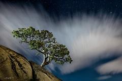 The magic power of a tree. (darklogan1) Tags: madrid longexposure nightphotography tree clouds spain wind granite logan lapedriza darklogan1