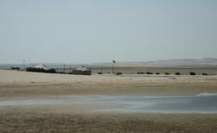 qatar deserto (40) (Parto Domani) Tags: trekking desert arabic east ash desierto oriente middle peninsula medio wste qatar deserto arabica dsert penisola   escursione  shaqra wste dsert