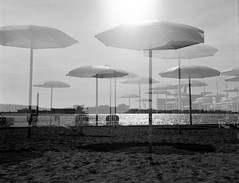 Beach Umbrellas - Queen's Quay (paulgumbinger) Tags: yashica yashicad tlr fuji acros 100 120mm film medium format monochrome blackandwhite toronto ontario queens quay harbourfront lake umbrella umbrellas double exposure beach sand sunlight city downtown