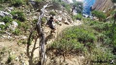 Calanques_Eissadon-38 (swimrun france) Tags: reconnaissance eissadon calanques décembre 2016 provence trail running alpitrail