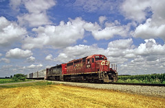 Southbound on the Indiana & Ohio (craigsanders429) Tags: indianaohiorailway train railroads wheatfields ohio shortlinerailroads canadianpacificmotivepower canadianpacific canadianpacificlocomotives southernpacificmotivepower southernpacific spmotivepower espee locomotives southernpacificlocomotives sky cloudsandsky puffyclouds
