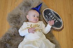 n e w . y e a r s . e v e (dear emma rae) Tags: newyearseve newyears newyear newyears2016 2017 holidays holiday2016 babypics babyphotos dearemmarae emmarae 10monthsold chalkboard dailybaby babyholiday emmasfirstyear emmasfirstnewyears