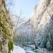 Hasdate River - Turda Gorge - Cheile Turzii, Transylvania, Romania