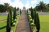 Looking up the stairway (Explored) (ejhrap) Tags: bahaishrineandgardens haifa israel garden tree formalgarden