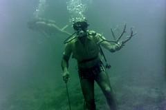 n0005.25 (avaragado) Tags: barbados coralreefclub fd197504 fd197604 fd197905 n0005 tonysmith