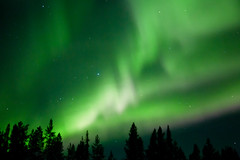 Aurora Borealis near Khibiny Mountains   Russia (ynaka29) Tags: northernlights auroraborealis khibiny russia apatity kirovsk arctic arcticcircle kolapeninsula