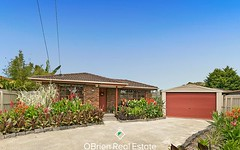 10 Parrot Court, Carrum Downs Vic