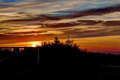 Sonnenaufgang am Hornbergbecken