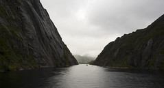 IMG_7318 (amanda.eliassen) Tags: norway trollfjorden photo photograph nature water ocean sea