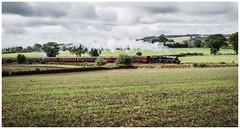 Hidden Help (Gingydadtog) Tags: shropshire steam locomotive passengertrain black5 wistanstow 45231thesherwoodforester