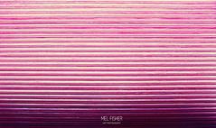 C L O S E D (* Mel Fisher *) Tags: pink red detail love wall vintage fun wooden warm pattern wand rosa down row chick explore pause shut zu rollo rolladen reihe fläche geschlossen colsed stuktur liniert