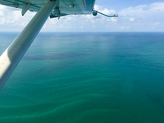 IMG_3776 (alauvstad01) Tags: usa florida windowview floridakeys drytortugasnationalpark luftfart dehavillandotter