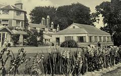 Warners Norton Chalet Hotel, Isle of Wight (trainsandstuff) Tags: vintage postcard retro isleofwight yarmouth holidaycamp warners nortonchalethotel