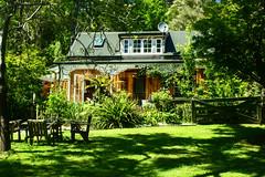 At a friends place (mariatischleder) Tags: new maria zealand neuseeland teararoa araroa tischleder