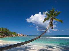 Seychelles © Gator / Dreamstime
