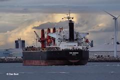 Thor Monadic (das boot 160) Tags: sea port docks boats boat dock ship ships maritime mersey docking bulker merseyshipping thormonadic