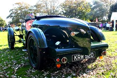Lea Francis tail (tiger289 (The d'Arcy dog supporters club)) Tags: park flowers trees sea plants plant tree cars beach dogs car architecture garden landscape fun outdoors woods heraldry waves estate westsussex fairground outdoor events parties clocktower vehicle greenbelt morris functions oldcars boules vintagecars plaques eastpreston clockhouse villagelife villagegreen breakwaters austin7 carshows veterancars sealane villagefestival searoad penangvillagerestaurant