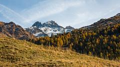 Paysage d'automne (La Tarrask) Tags: montagne automne switzerland suisse swiss paysage arbre valais valdentremont bourgstpierre