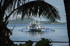 161117_Philippines_0087.jpg (Frank Schwellnus) Tags: palawan reise tao philippinen 5daytrip philippines travel taophilippines elnido mimaropa ph