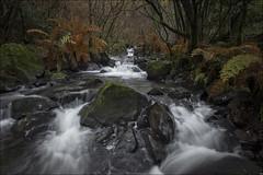 Paradise (Jose Cantorna) Tags: río seda agua nature paisaje nikon d610 water waterfall cascada corrientedeagua landscape saltodeagua