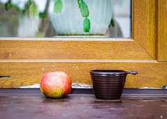 Apple and a cup with wooden window (phuong.sg@gmail.com) Tags: accessibility apple boulevard broken builtstructure closed closing construction doorway entrance fences glass handle history house lever lock locking lumberindustry monument old oldtown residentialstructure rotten sale security street timbered tourism town travel traveldestinations vacations village visit wall window wood