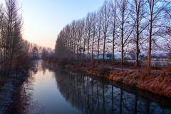 La Bourbre (◄Laurent Moulin photographie►) Tags: la bourbe riviere river colombier saugnieu eau cours d isere rhône arbres rangée arbre reflet alignement levée de soleil couleurs jour hiver tignieu jameyzieu bourbre