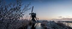 Frozen polder (zoomleeuwtje) Tags: alblasserwaard donkse laagten holland netherlands polder winter mill windmill molen