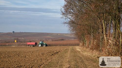 Traktor bei Selzen
