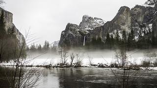 Mist on the Meadow