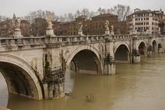 Rome 2010 530