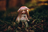 2017 .... The Year of Hopes and Dreams <3 (*DollyLove*) Tags: pukifee rin bjd tinybjd resin fairyland bokeh canon 5dmkii 85mm 12 light happy new year flickr friends 2017 doll dolly would be lost without dollies