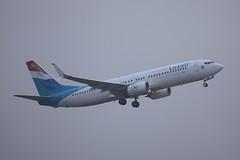 LX-LBA Boeing B738 LTN 31Dec2016 (Citation Ten) Tags: lxlba b738 lgl ltn