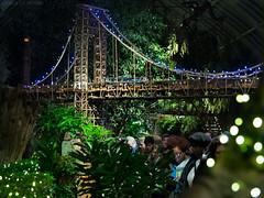 George Washington Bridge (alex props) Tags: bronx gscale georgewashingtonbridge hauptconservatory holidaytrainshow nybg nyc night suspensionbridge train